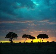 sunset in masai mara national reserve, kenya