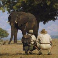 safari travelers in kenya