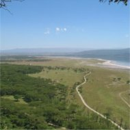 kenya, lake nakuru national park