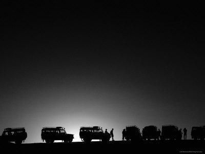 land rovers on safari, kenya