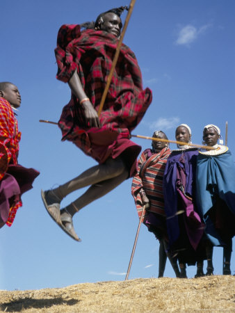 masai warriors involved in a jump dance, masai mara, kenya