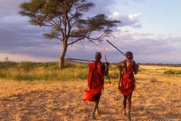 masai warriors at sunset, amboseli national park, kenya