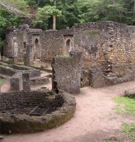 the gedi ruins, kenya coast area