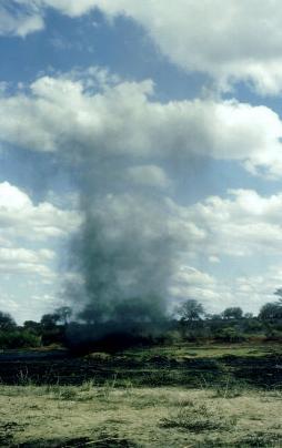 Dust devil in Tsavo East national park, Kenya