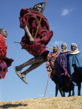 masai warriors involved in a jump dance, masai mara, kenya